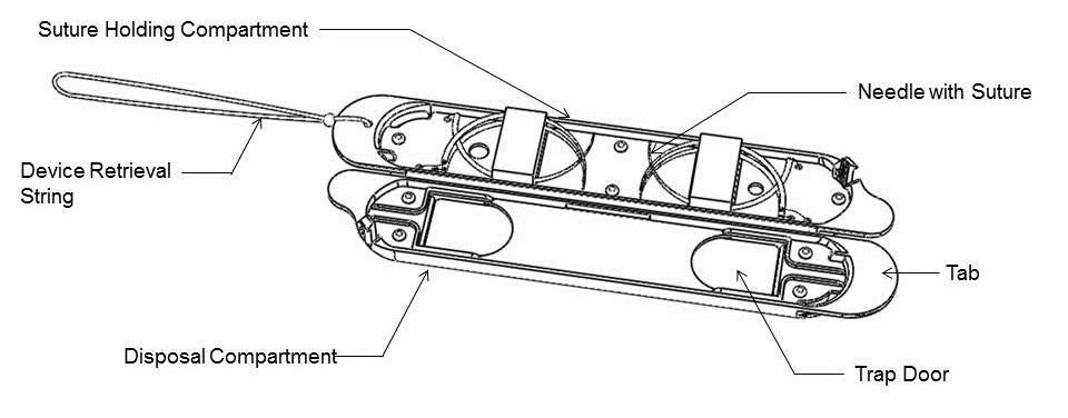 line-drawing1